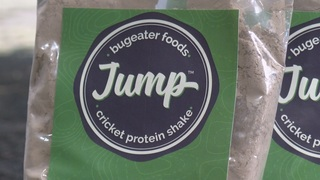 Local food company bets on power of crickets
