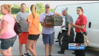 Couple who lost everything in fire finds hope