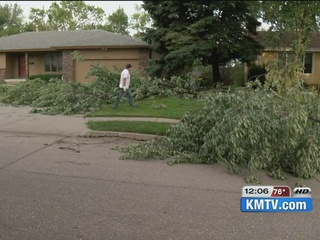 City offer residents debris drop-off service