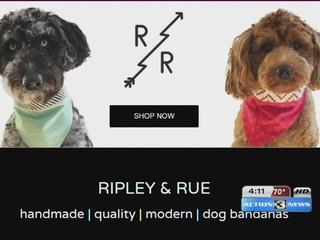 Omaha woman starts dog bandana company