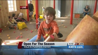 Vala's pumpkin patch opens for the season