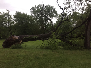 PHOTOS: Severe weather hits the Omaha metro area