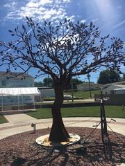 Man sculpts trees from metal in retirement