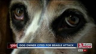 Authorities cite woman whose dog mauled beagle