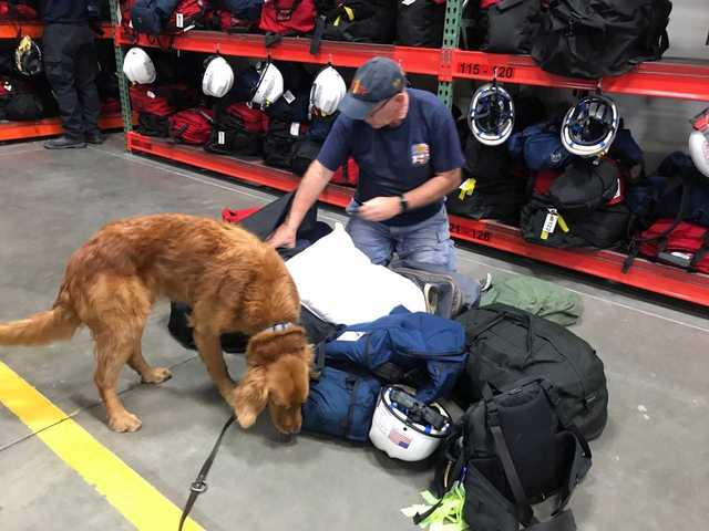 Fairfax firefighters, just back from Harvey, get ready to help with Irma